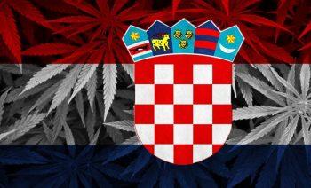Drapeau_Croatie_avec_un_fond_de_feuilles_de_cannabis